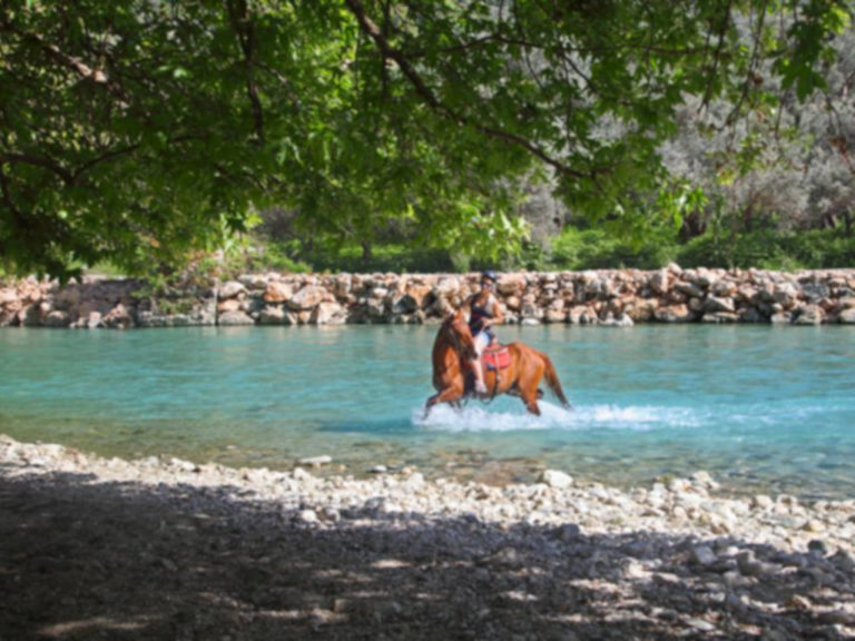 Horseriding in Acheron river/Ιππασία στον ποταμό Αχέροντα